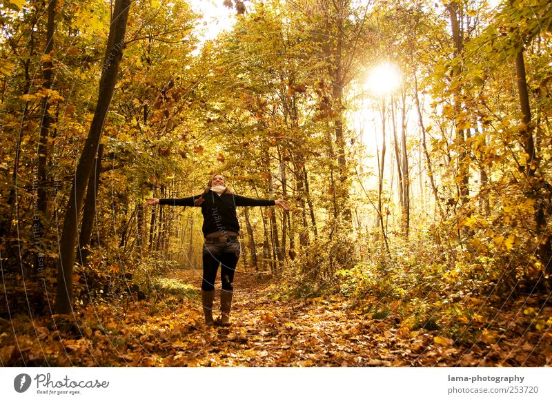 Golden times Joy 1 Human being Sunlight Autumn Leaf Autumn leaves Autumnal landscape Automn wood Laughter Happiness Yellow Happy Sunbeam To go for a walk