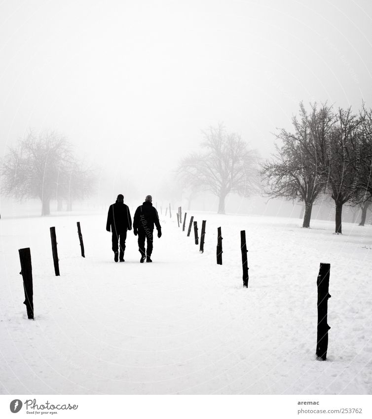 dialogue Winter Human being Masculine Man Adults Couple 2 Nature Landscape Plant Fog Snow Tree Park Relaxation Going To talk Hiking Cold Gray Together Calm