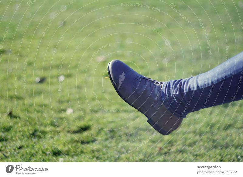 kick it like beckham! Legs Feet 1 Human being Grass Meadow Clothing Pants Footwear Blue Green Thin Skinny jeans Copy Space top Bright background Isolated Image