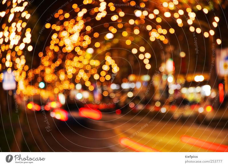 City Christmas & Advent Red Yellow Street Lighting Berlin City life Transport Gold Anticipation Passenger traffic Cozy Prayer Night life Christmas Fair