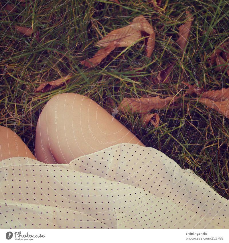 Human being Nature Beautiful Autumn Feminine Grass Garden Legs Park Earth Sit Natural Dress Warm-heartedness Idyll Thin