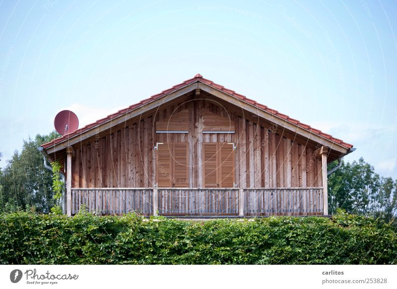 Blue Green Tree Summer House (Residential Structure) Wall (building) Architecture Wood Wall (barrier) Building Closed Facade Safety Idyll Beautiful weather Handrail