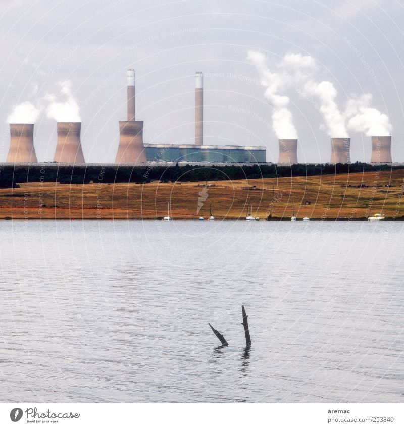 forest dieback Energy industry Coal power station Energy crisis Nature Water Autumn Climate change Lakeside South Africa Deserted Electricity generating station