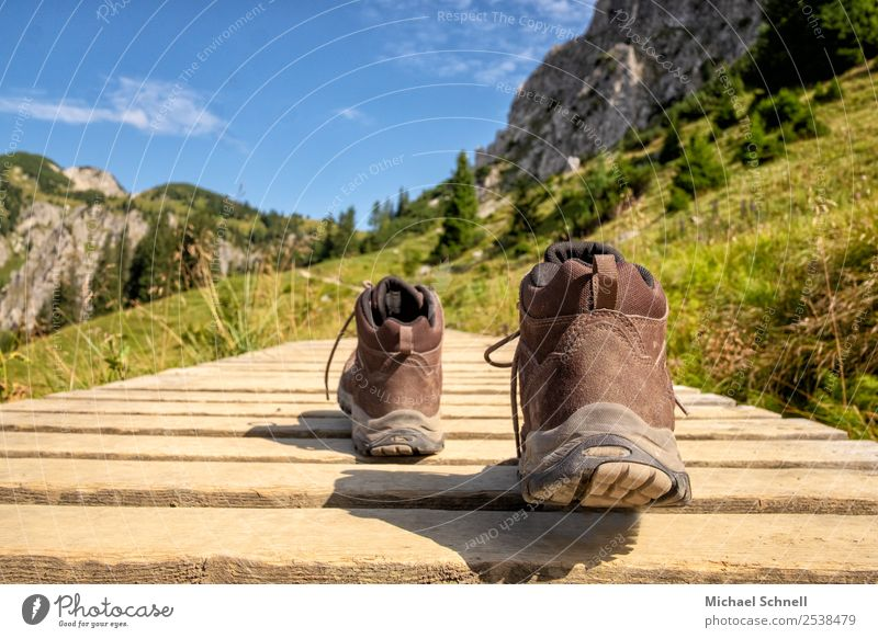 Hike! Leisure and hobbies Vacation & Travel Mountain Hiking Hiking boots Environment Nature Landscape Alps Tannheimer Valley Footwear Fitness Fresh Healthy