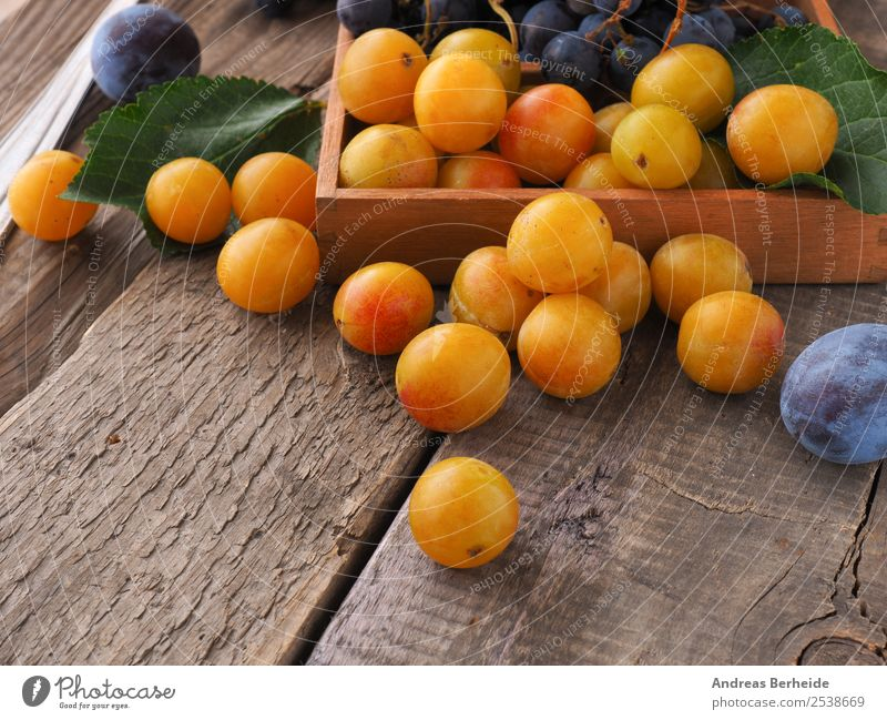 mirabelle plums Fruit Dessert Organic produce Summer Nature Delicious agriculture autumn Background picture berry black blue box branch brown bunch crop dark