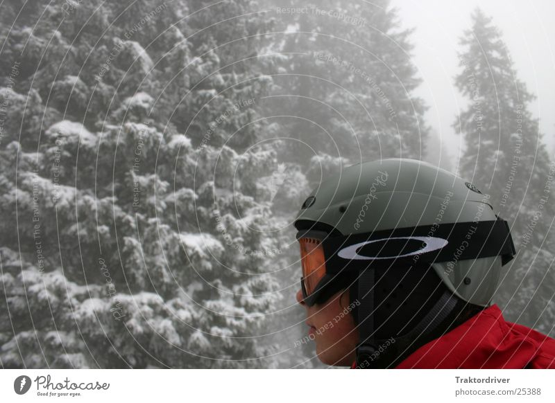 Human being Man Winter Snow Sports Fog Protection Safety Fir tree Earnest Skier Patch of colour Helmet Logo Winter forest