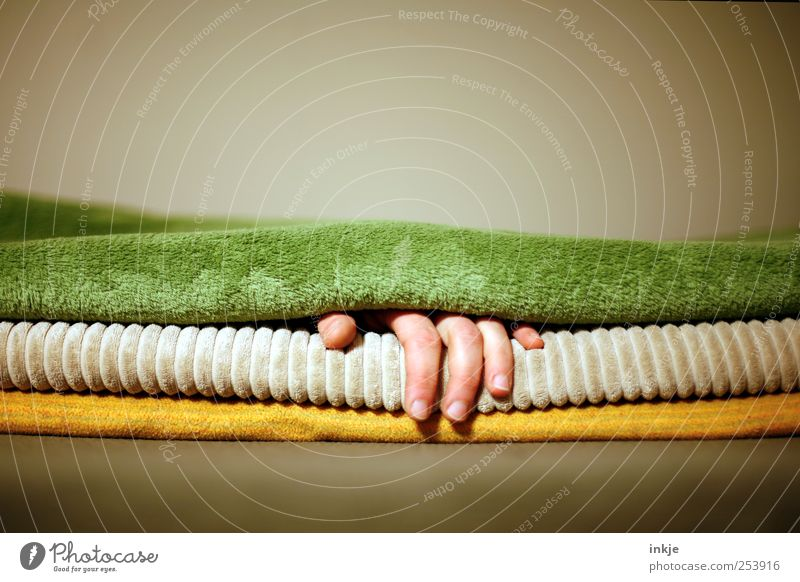 Hand Calm Relaxation Life Emotions Moody Leisure and hobbies Lie Fingers Sleep Break Living or residing Soft To enjoy Well-being Blanket