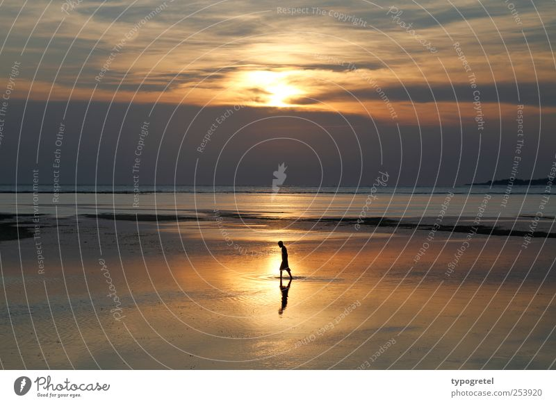 Human being Sky Man Vacation & Travel Ocean Beach Clouds Calm Far-off places Adults Coast Horizon Going Gold To go for a walk Meditation