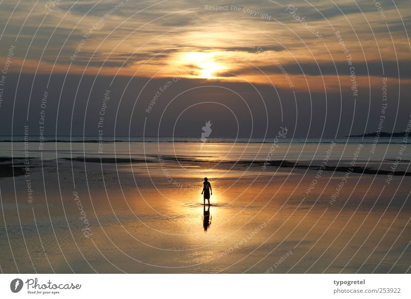 Human being Sky Man Nature Vacation & Travel Ocean Beach Clouds Calm Far-off places Adults Coast Horizon Glittering Gold Stand