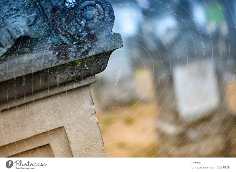 Old Blue Calm Death Stone Brown Hope Grief Transience Cemetery Caution Ornament Tombstone Curlicue Acceptance