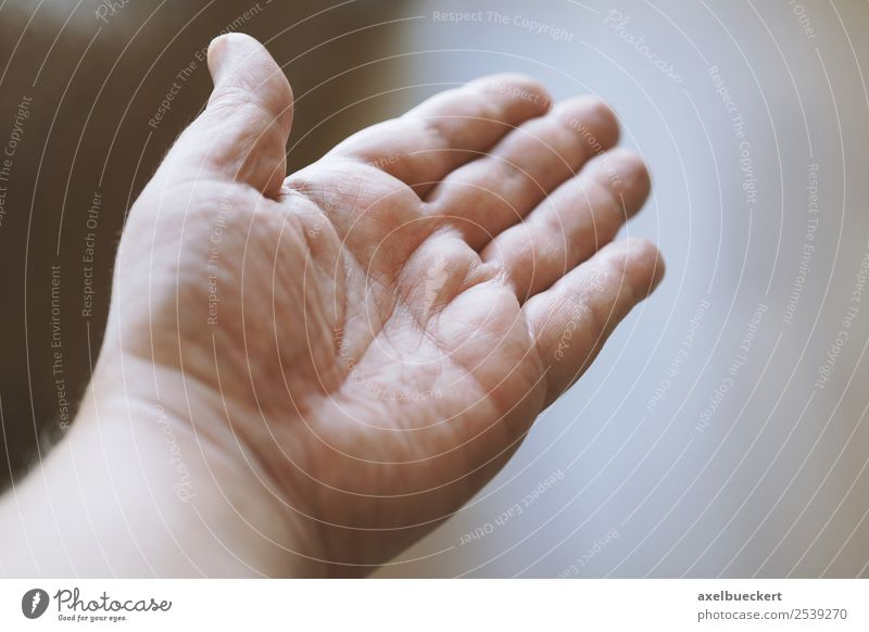 open male hand Human being Masculine Man Adults Hand Fingers Authentic Palm of the hand Gesture Open Help Indicate Colour photo Subdued colour Interior shot