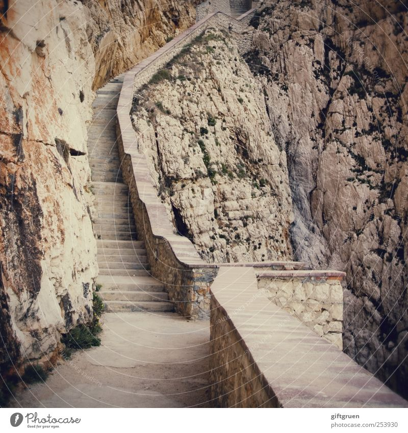 Environment Mountain Rock Stairs Dangerous Elements Direction Upward Effort Go up Steep Sparse Stony Land Feature Wall of rock Steep face