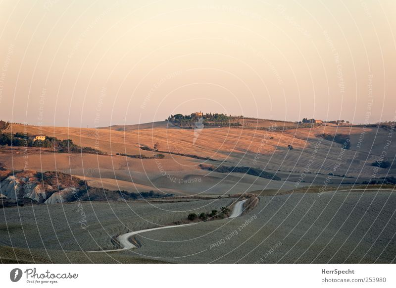 Tuscany morning Nature Landscape Cloudless sky Autumn Beautiful weather Field Hill Street Lanes & trails Esthetic Brown Crete Dawn Wavy line Curve Harvest Farm