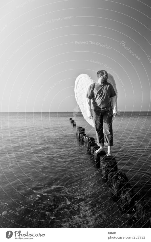 angels Freedom Ocean Human being Masculine Man Adults 1 30 - 45 years Water Horizon Coast Baltic Sea Wing Angel Stand Exceptional Hope Belief Religion and faith
