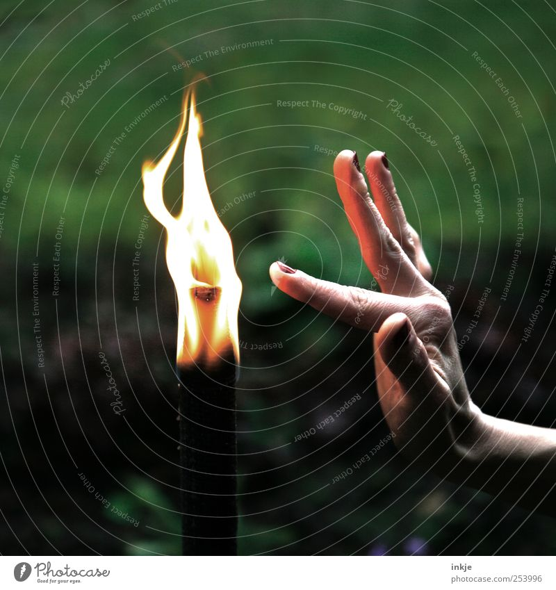 touch the flame... Fire Torch Flame Touch Playing Illuminate Dance Hot Long Near Point Emotions Moody Attentive Caution Self Control Judicious Curiosity