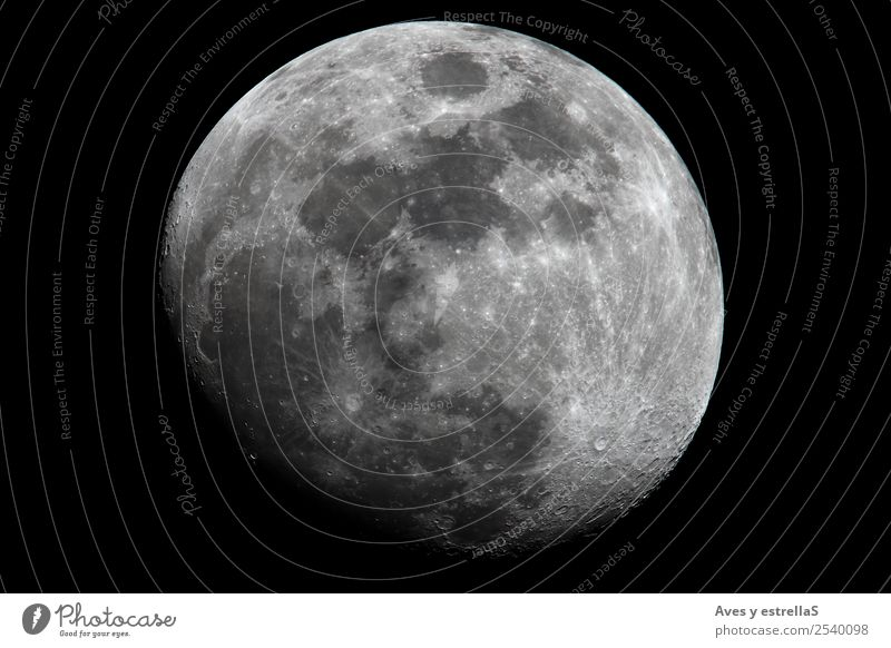 Gibbous moon Education Science & Research School Study School building Advancement Future Nature Sky Sky only Night sky Moon Full  moon Flying Cool (slang)