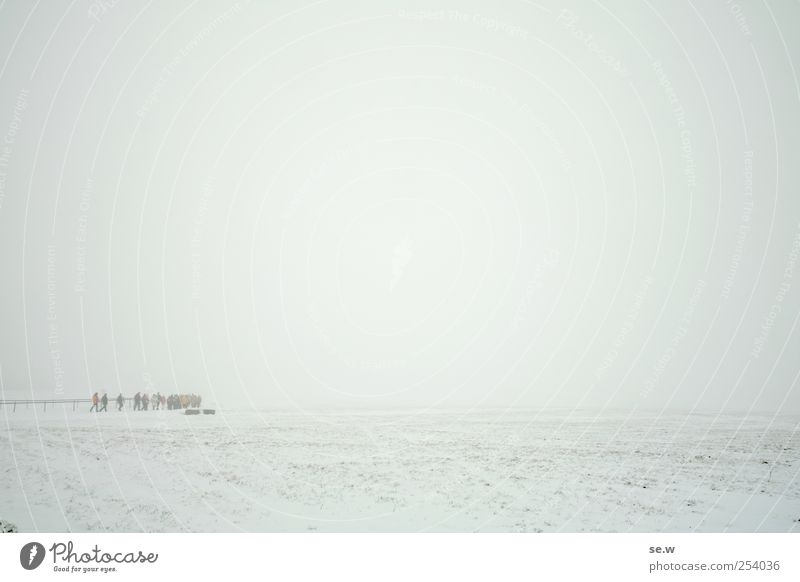 white Winter Hiking Human being Group Elements Sky Weather Fog Snow Field Mountain Infinity Cold White Calm Far-off places Hiking group Colour photo