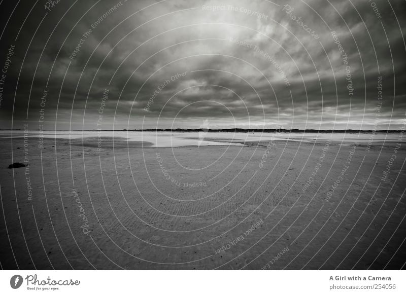 Sky Nature Water Beautiful Ocean Beach Clouds Far-off places Environment Dark Landscape Sand Coast Wind Wild Natural