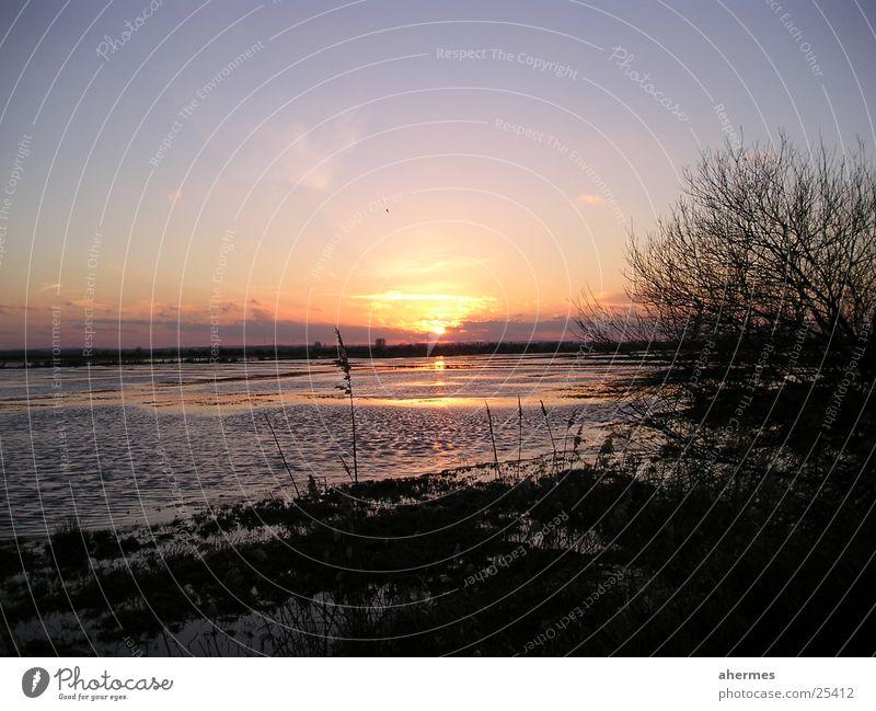Sunset Damme Clouds Lake Bushes Authentic dump Nature Landscape Natural