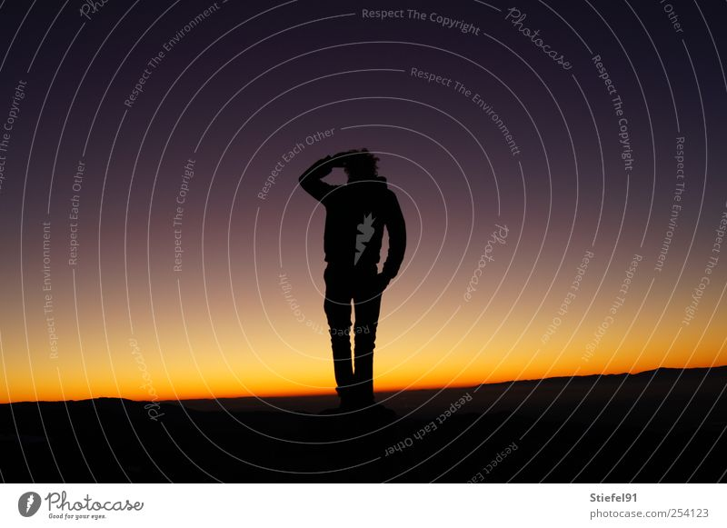 View into the distance Sun Masculine 1 Human being Landscape Sky Night sky Horizon Sunrise Sunset Looking Stand Free Gigantic Large Self-confident Safety