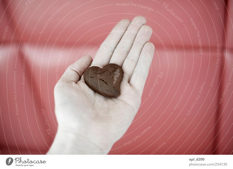 Human being Hand Red Adults Love Nutrition Happy Food Brown Heart Masculine Sweet To hold on 18 - 30 years Joie de vivre (Vitality) Chocolate