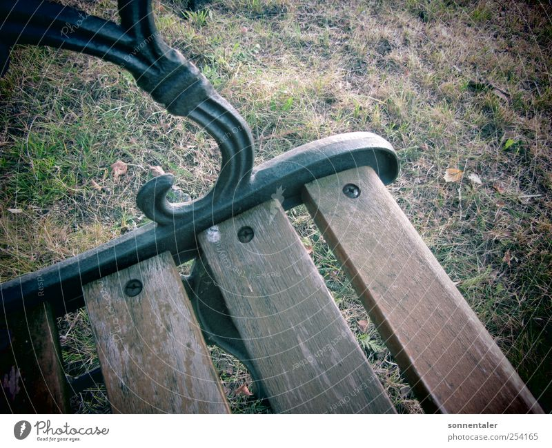 private banking Relaxation Calm Furniture Bench Autumn Grass Meadow Think Gloomy Sadness Grief Death Loneliness Seating Sit Wood Metal Lawn Rest Break Restless