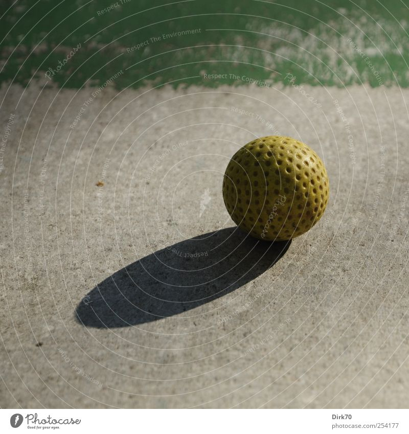 Quiet before the blow Leisure and hobbies Mini golf Ball sports Golf Golf course miniature golf course Playground Golf ball Concrete Plastic Sphere Circle Round
