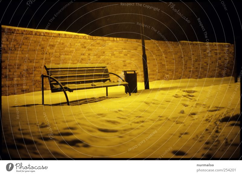 cold and alone Environment Nature Winter Climate Ice Frost Snow Relaxation Esthetic Dark Cold Trashy Gloomy Moody Loneliness Virgin snow Colour photo Night