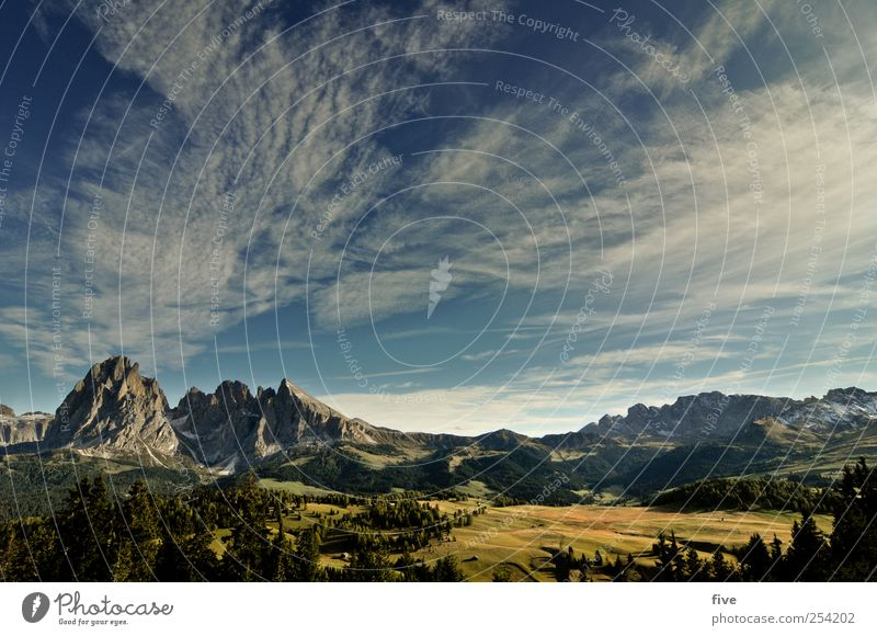 Alpe di Siusi Environment Nature Sky Clouds Autumn Climate Weather Beautiful weather Plant Tree Meadow Forest Hill Rock Alps Mountain Peak Far-off places
