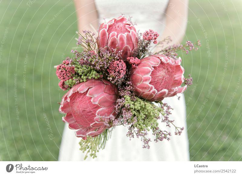 Bridal bouquet of proteas Lifestyle Elegant Garden Decoration Wedding Feminine Woman Adults Couple 1 Human being Plant Flower Blossom Exotic Bouquet Protea