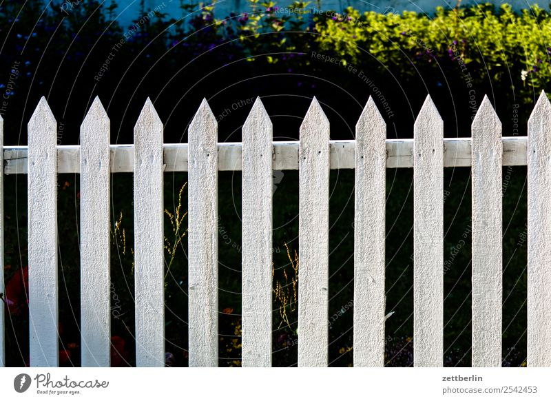 fence Fence Garden fence Wooden fence pile Fence post Wooden board Neighbor Border Barrier Copy Space Deserted White Curiosity Point