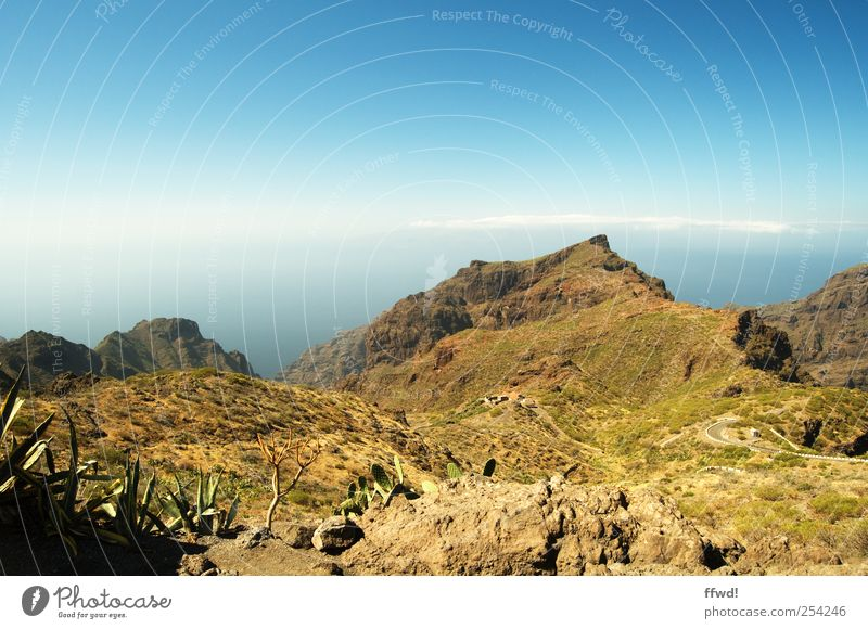 TF-436 Vacation & Travel Trip Far-off places Summer Mountain Tenerife Environment Nature Landscape Sky Beautiful weather Bushes Rock Adventure Loneliness