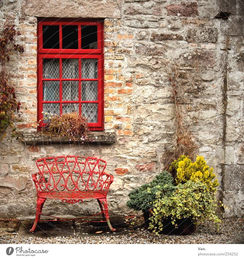 Plant Red House (Residential Structure) Window Wall (building) Wall (barrier) Stone Glass Sit Flat (apartment) Facade Bench Village Cozy Gravel Curtain