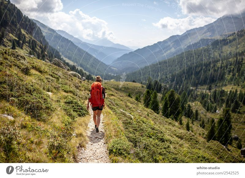 The Wanderer Healthy Athletic Fitness Vacation & Travel Tourism Trip Adventure Summer Summer vacation Mountain Hiking Human being Woman Adults 1 18 - 30 years