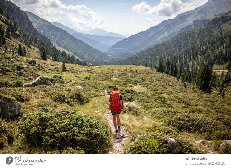 dream landscape Woman Adults Hiking Backpack Backpacking Backpacking vacation Class outing Hiking trip To go for a walk Healthy Footpath hiking trail Valley