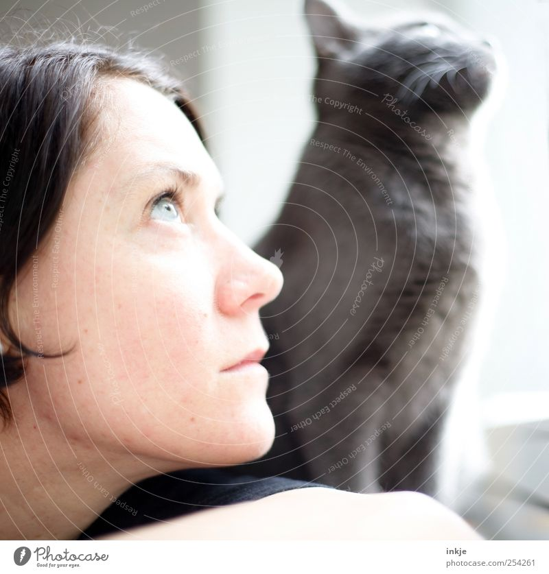 you and I Leisure and hobbies Living or residing Woman Adults Couple Life Face 1 Human being Cat Animal Observe Think Discover Looking Dream Wait Together