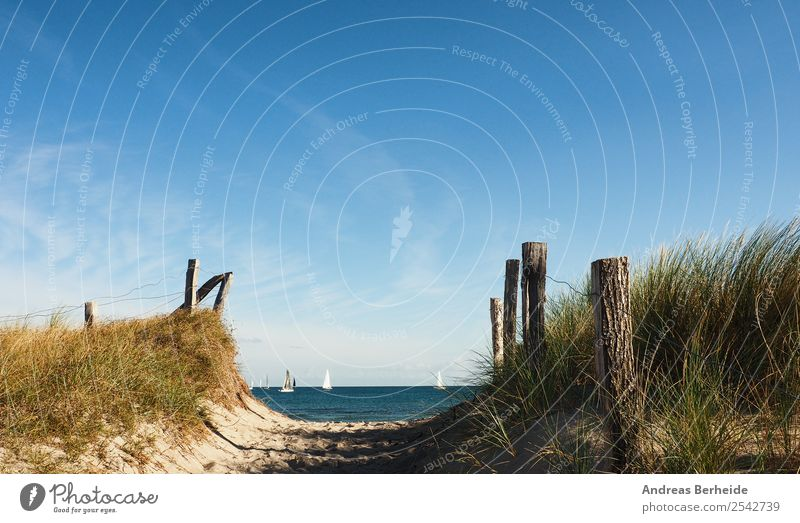 to the beach Relaxation Vacation & Travel Summer Beach Nature Sand Baltic Sea Infinity Lanes & trails Far-off places Germany Background picture baltic