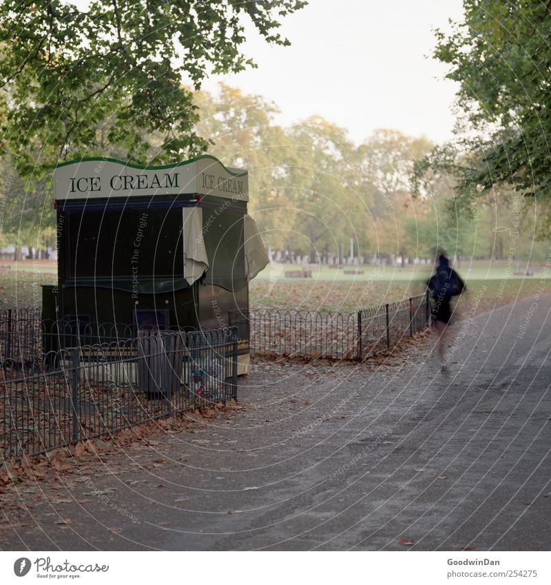 Green Park 6am Human being Woman Adults 1 Environment Nature Capital city Ice-cream stand Fence Walking Authentic Bright Cold Many Moody Colour photo