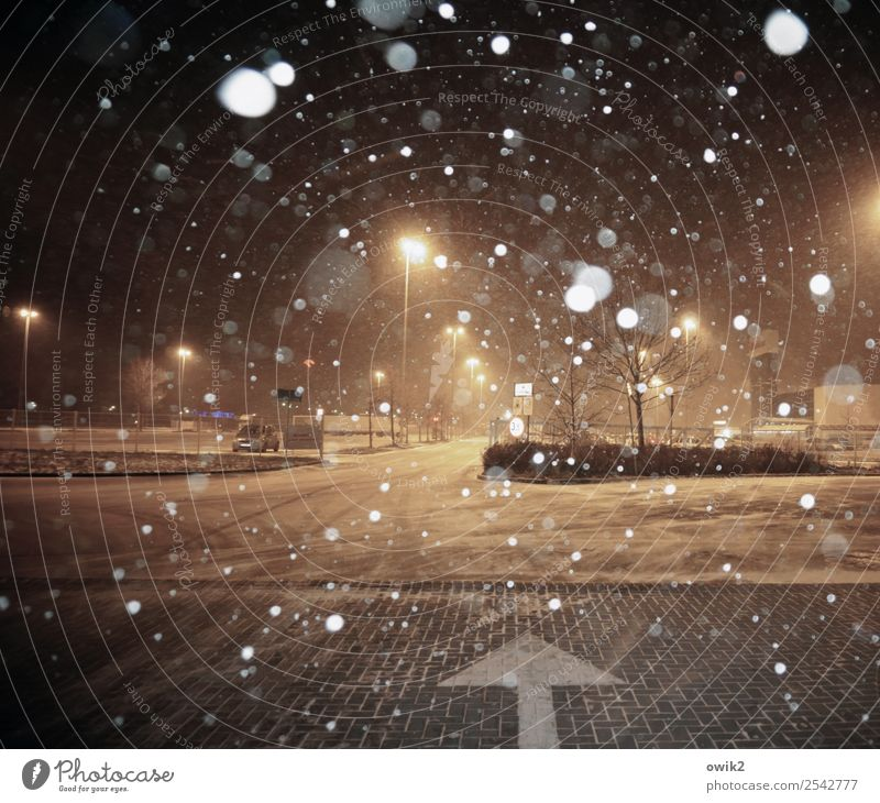 parking search Winter Snowfall Tree Street Road junction Parking lot Parking lot lighting Sign Arrow Cold Wet Town Snowflake Shopping malls Lamp post