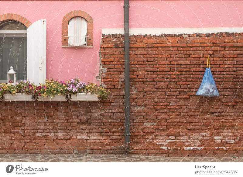 Red House (Residential Structure) Window Architecture Wall (building) Building Wall (barrier) Exceptional Pink Retro Authentic Wait Italy Manmade structures