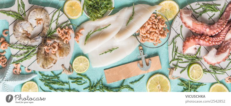 Various seafood on blue with algae Food Seafood Nutrition Lunch Banquet Shopping Style Design Healthy Eating Restaurant Octopus Shrimps Background picture Squid