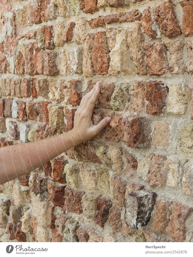 brick touch Woman Adults Arm Hand 1 Human being 18 - 30 years Youth (Young adults) 30 - 45 years Old town House (Residential Structure) Building Wall (barrier)