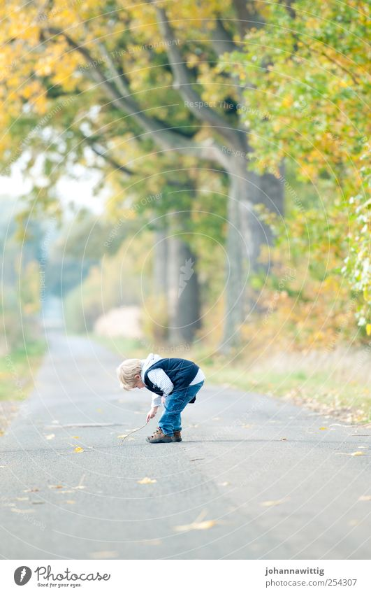 Human being Child Nature Green Tree Leaf Relaxation Autumn Playing Landscape Boy (child) Grass Infancy Blonde Masculine Happiness
