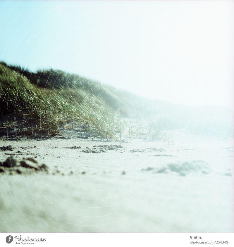 On the beach Sand Cloudless sky Sunlight Autumn Coast Beach Beach dune Illuminate Far-off places Infinity Blue Green White Nature Calm Vacation & Travel Bright