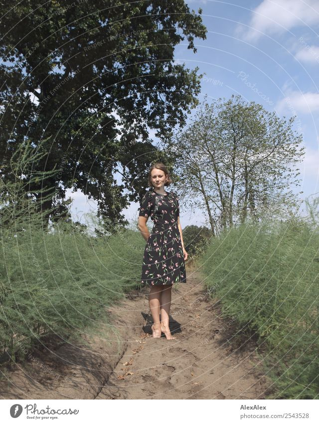 Young woman in a summer dress standing in an asparagus field Joy already Life Trip Adventure Youth (Young adults) 18 - 30 years Adults Environment Landscape