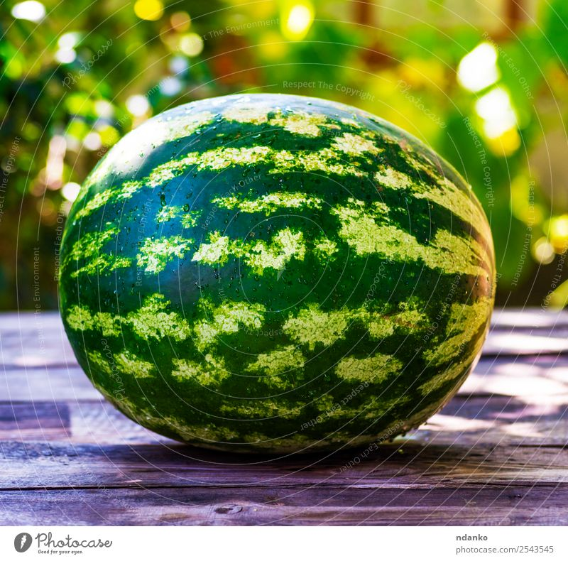 ripe green round watermelon Fruit Nutrition Vegetarian diet Summer Sun Table Nature Wood Eating Fresh Natural Juicy Green Colour whole Water melon background