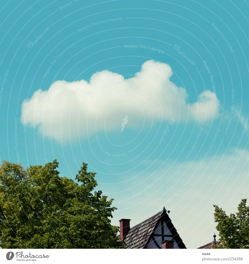Horton hears a Hu! House (Residential Structure) Environment Nature Elements Air Sky Clouds Climate Weather Beautiful weather Roof Funny Blue Green White