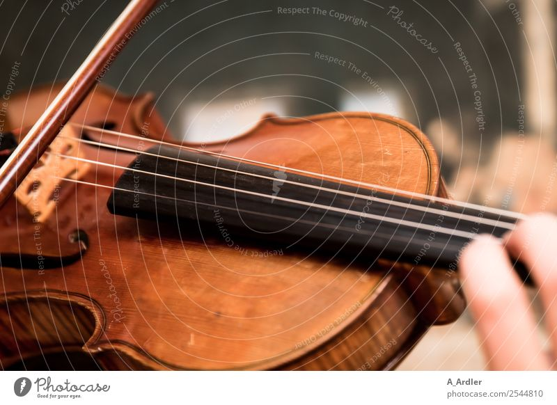 violin Classroom Hand Artist Music Listen to music Concert Outdoor festival Stage Musician Orchestra Violin Brown Black Joy Success Leisure and hobbies