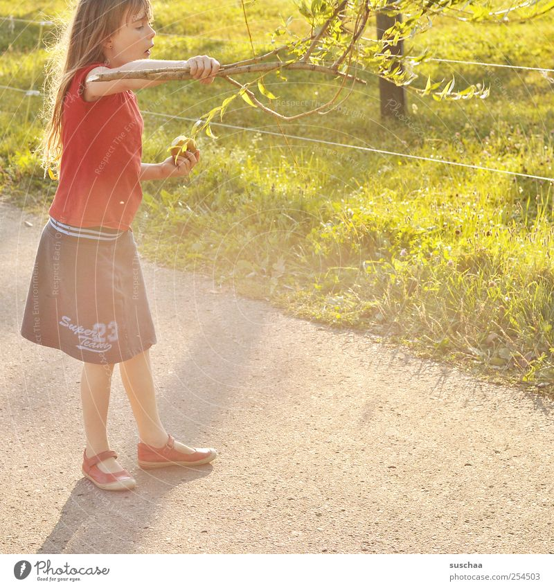 Human being Child Nature Youth (Young adults) Green Girl Summer Joy Face Environment Meadow Grass Head Hair and hairstyles Legs Infancy