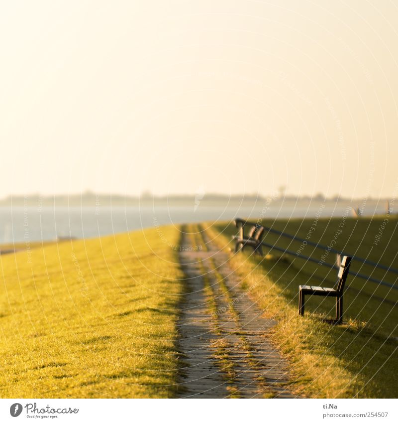 North Sea eavesdropping Grass Coast Mud flats Dithmarschen Schleswig-Holstein Wadden Sea Nature Reserve Relaxation Bright Tourism Colour photo Deserted